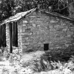 Hen House Ruins – West Fork: Trail 108 [06.14.2013]