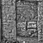 Life Abandon – West Fork: Trail 108 [06.14.2013]
