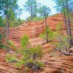 Rocks at West Fork: Trail 108 [06.14.2013]